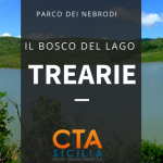 BOSCO DEL LAGO TREARIE